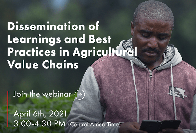 Webinar to share learnings on the Irish Potato Value Chain Financing Project